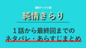 朝ドラ「純情きらり」のネタバレ!あらすじを最終回まで全156話紹介!