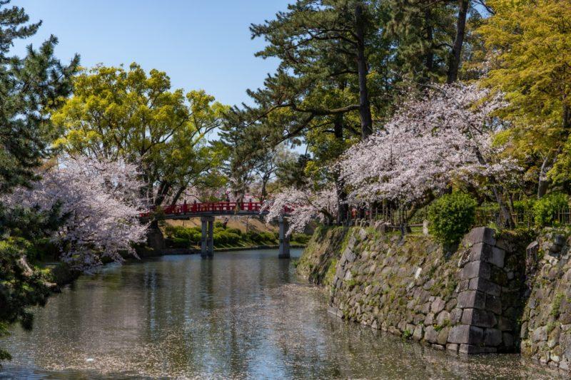 岡崎城の堀